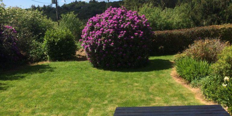 Maire Mc Enhill back garden area 2020