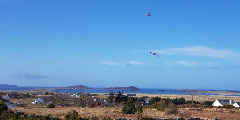 Frank Port Arthur views seaview good 2020