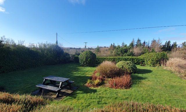 Maire Mc Enhill - new photos - back garden