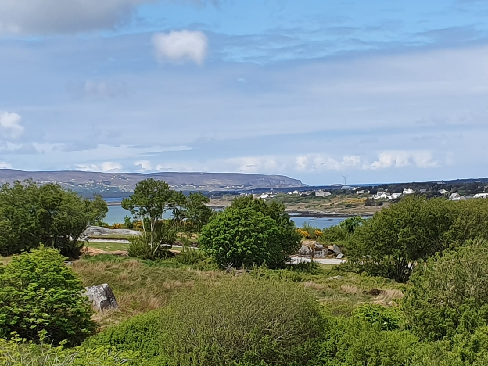 Mullis - View of Aranmore from house