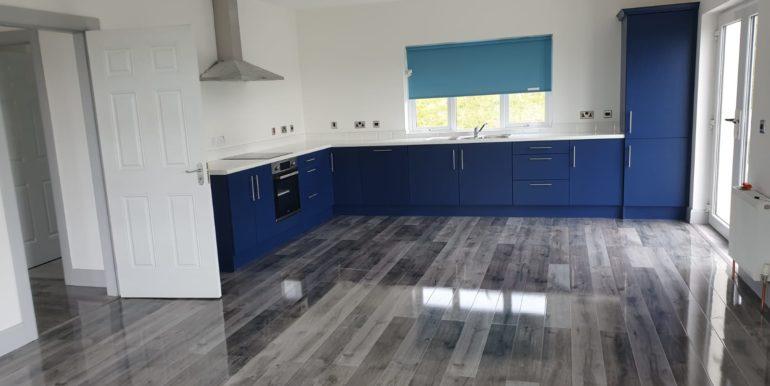 W Alcorn - Blue Kitchen 2 - June 2020