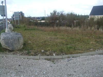 Upper Dore - Back garden 2.