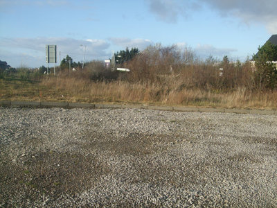 Upper Dore - Yard 2.