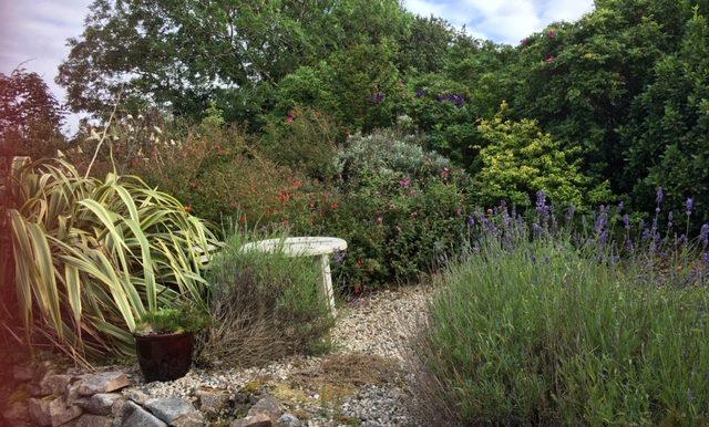 Mc Murray - small garden.
