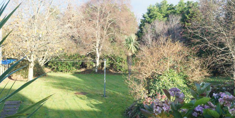 Sisters Carnmore Road garden area 12. Nov 2020