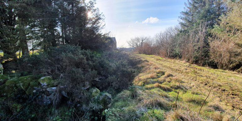 Sean Mc Bride - view of land 1.