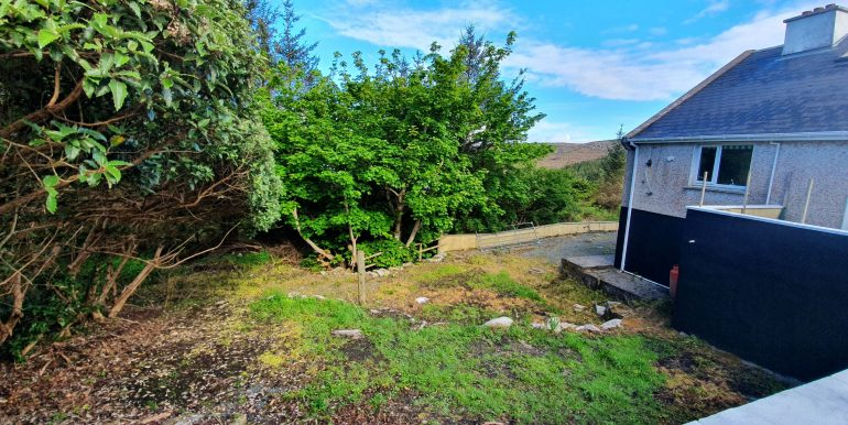 Joe Joyce ,A - wesr garden area May 2021