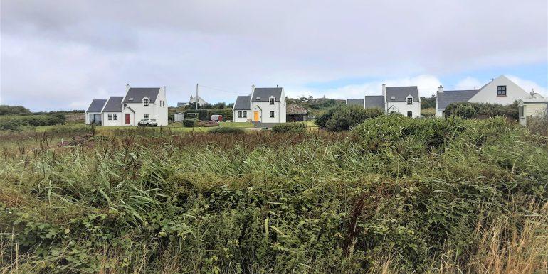 Sweetnam 1 view over reeds of development adj 2021
